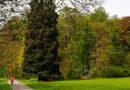 Landeswandertag in Nieder-Mörlen am 26. September 2021 geplant
